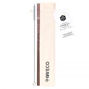 Ever Eco On The Go Reusable Straw Kit – Rose Gold
